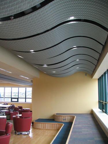 Curved-Metal-Memorial-University-4